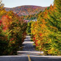 Le Canada, une belle contrée qui se découvre en toute saison