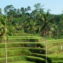 Voyage à Bali, les lieux incontournables !