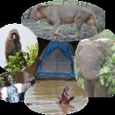 Le BENIN un pays d'Afrique de l'Ouest à Découvrir