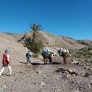 Randonnées et du trekking au Maroc :