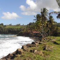 Parcourir les sites intéressants de la Martinique