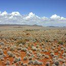 Road trip en Namibie entre mer et désert