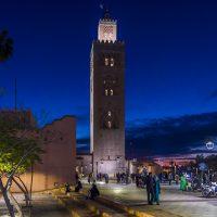 Les expériences et excursions incontournables à Marrakech